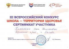 Школа - территория здоровья - 0002